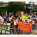 Puebla: Marcha por el día del perro callejero